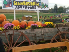 Wagon with pumpkins at Summers Farm entrance.
